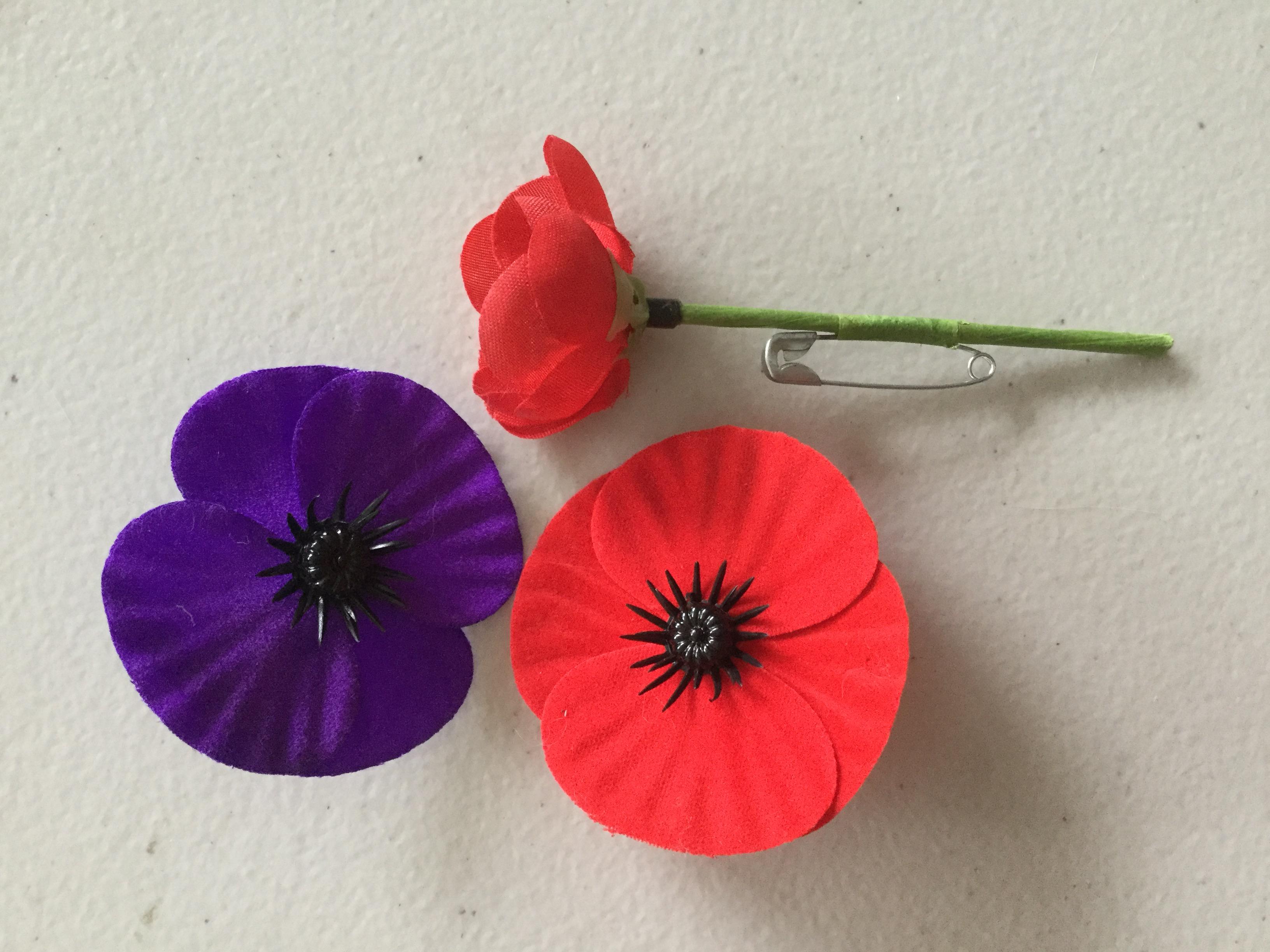 アンザックデーのポピーの花の由来とフランダースフィールドの詩