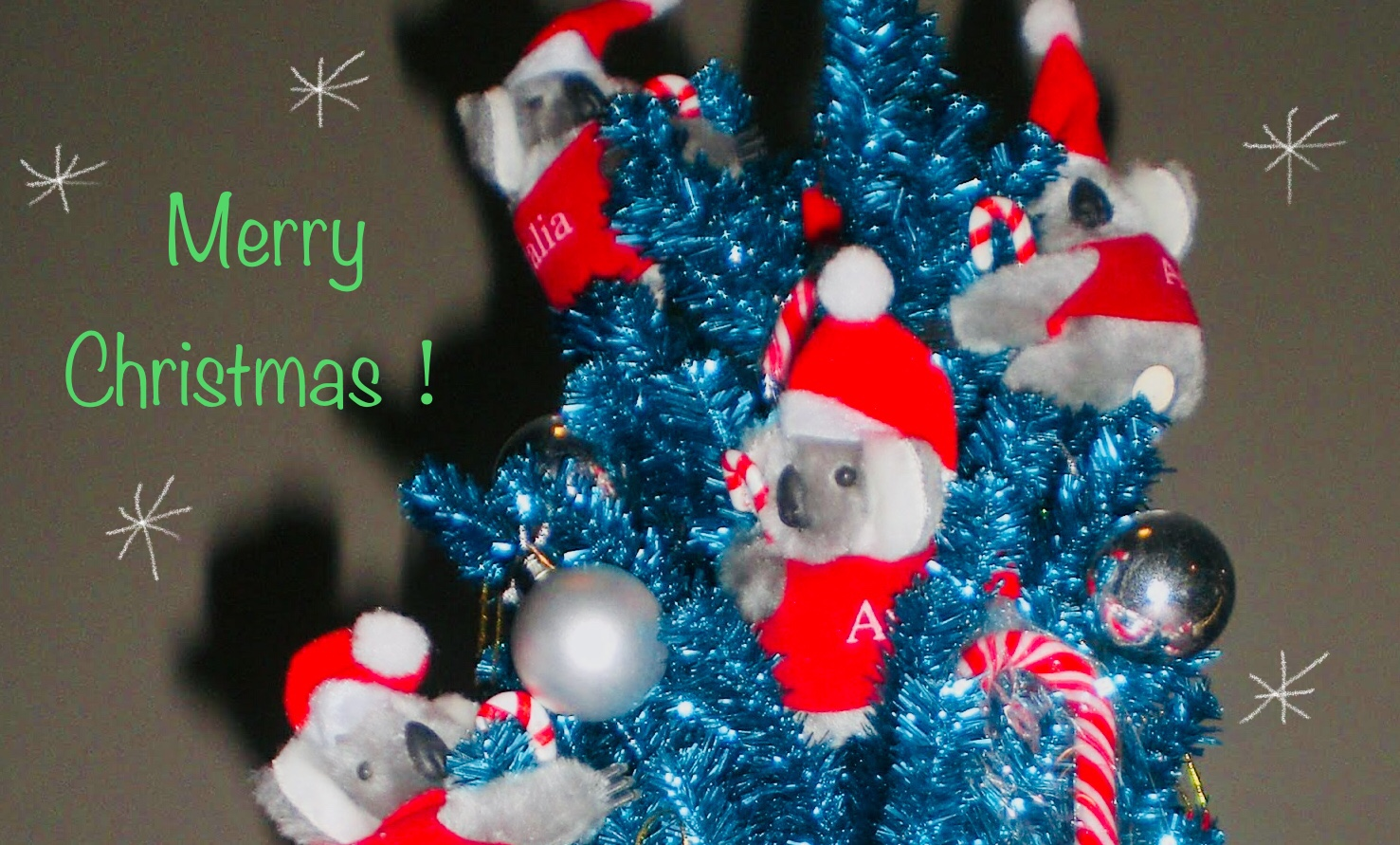 Christmas in July☆オーストラリアはクリスマスが2度やって来る!