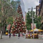 シドニーのクリスマスツリー点灯式ってこんな感じ!