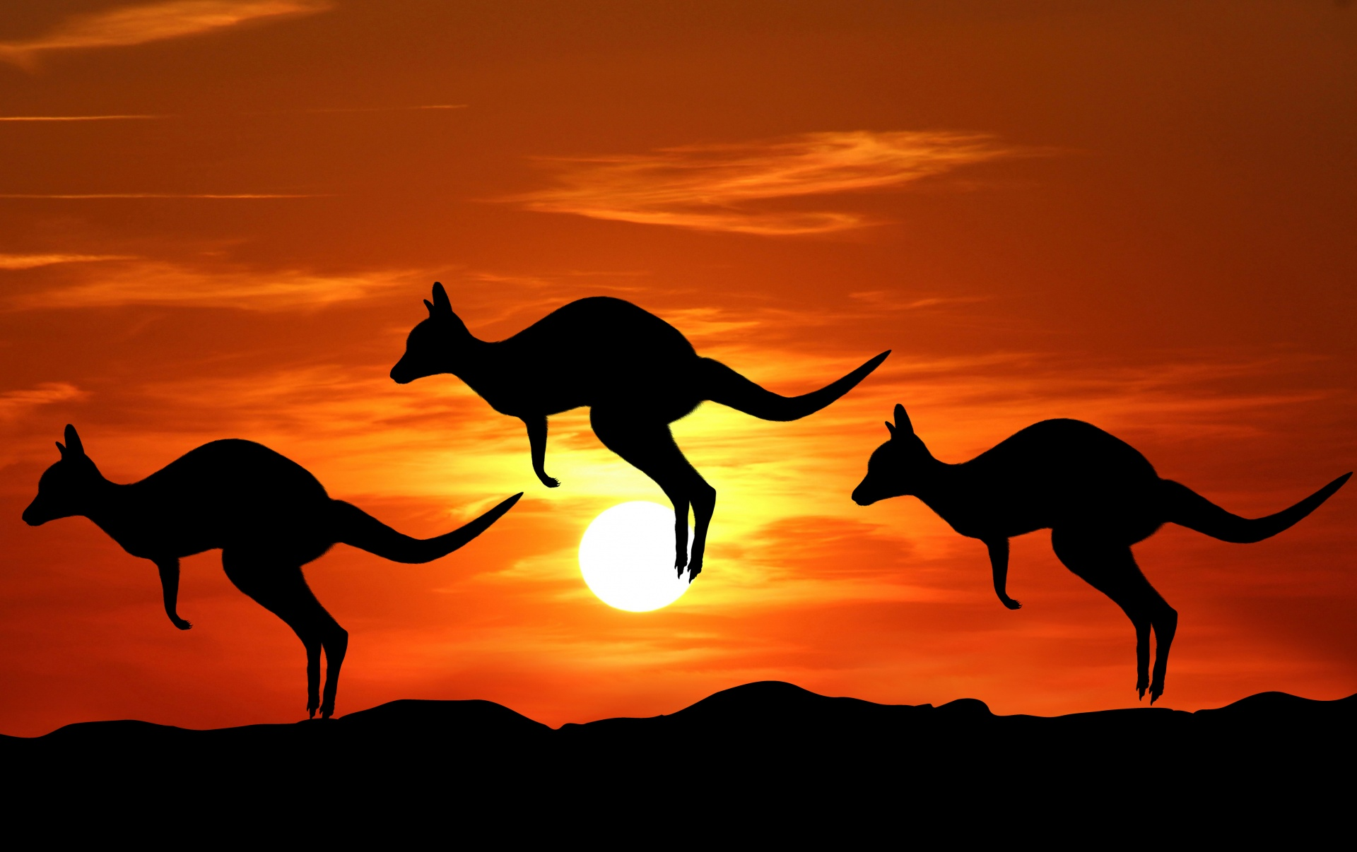 映画 Australia (オーストラリア) のあらすじ・感想