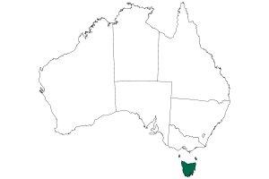 タスマニア全体地図