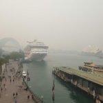 ブッシュファイヤーで煙るシドニーと大気汚染 PM2.5 を防ぐP2マスクとは?