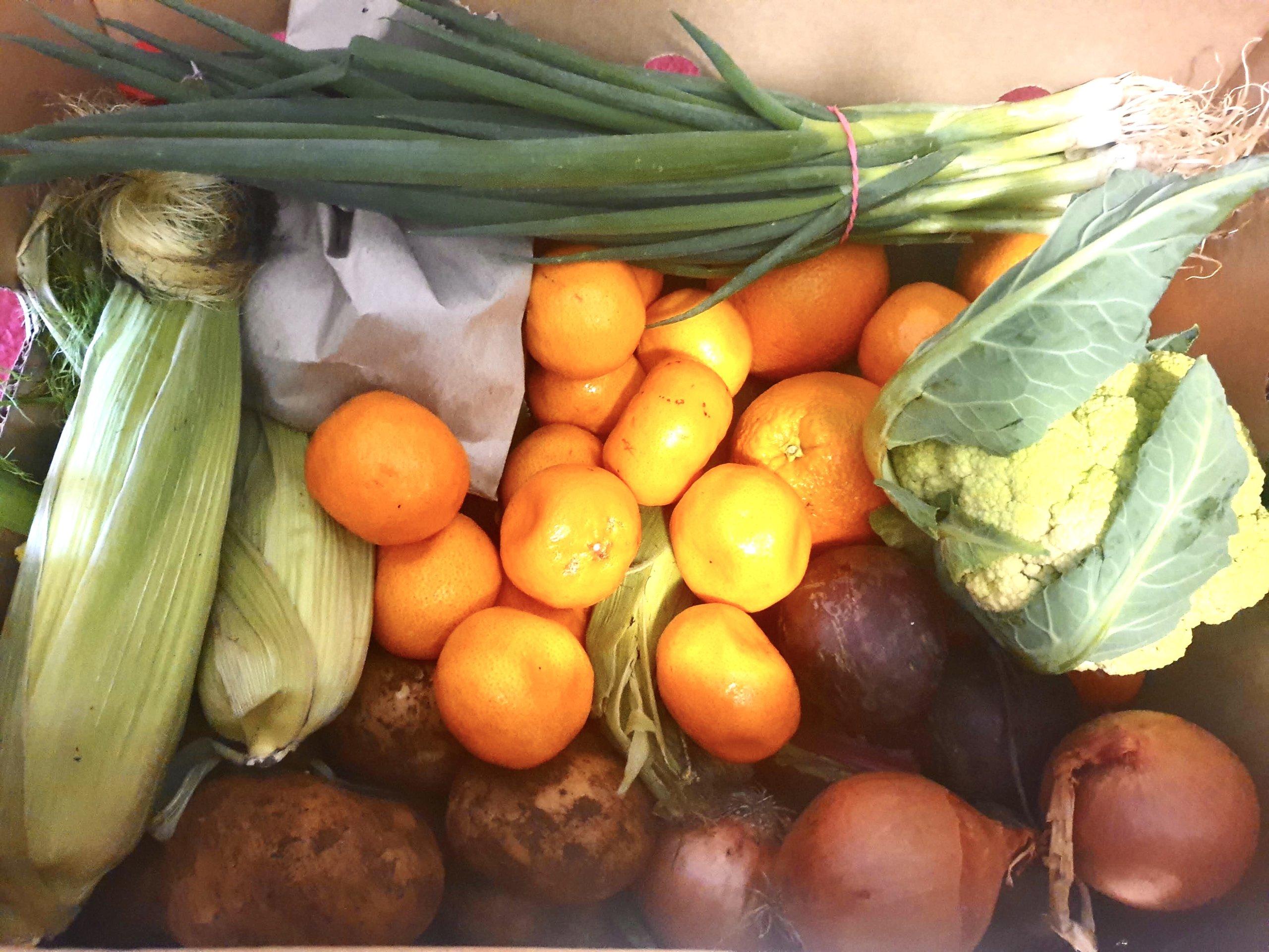 バトローのファームから取り寄せた珍しい野菜とその食べ方を少しだけ紹介