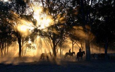 地元では有名な衝撃のオーストラリア都市伝説10選