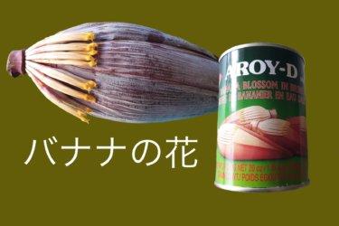 バナナの花の缶詰はタケノコみたいだった