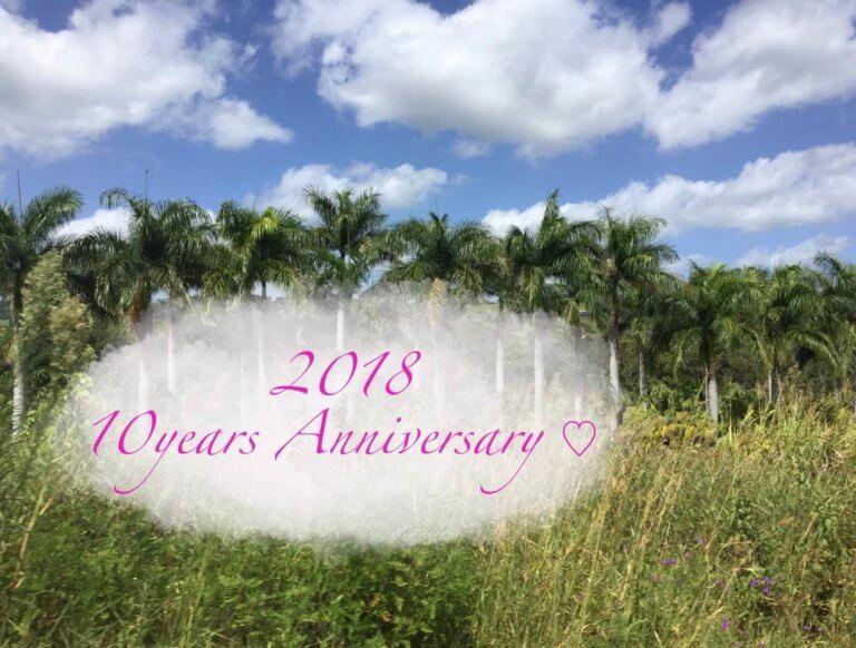 Anniversary 2018