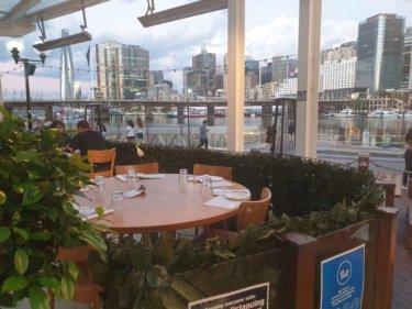 シドニーの観光地ダーリングハーバーでおすすめの『Cyren Bar Grill Seafood』
