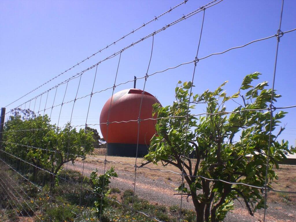 Big Orange Berri