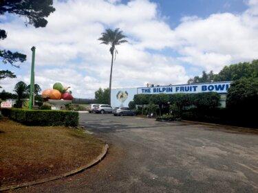 大きなモニュメントが目印の『ビルピン・フルーツボール』でリンゴづくし‼︎