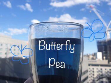 びっくりするほど真っ青な『バタフライピー』というお茶は体にも良いらしい